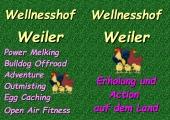 Voransicht Flyer Wellnesshof - Grafische Darstellung der Hühner aus openclipart.org